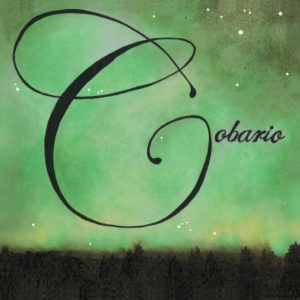 Cobario - Insight